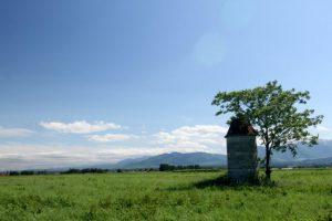 夏の牧草地 北海道 清水町