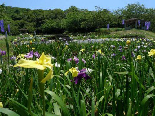 愛知県 渥美半島 初立池公園
