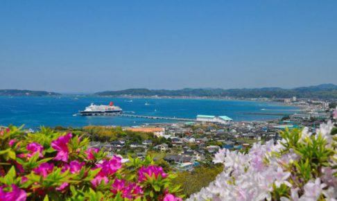 館山市 船舶寄港(にっぽん丸)
